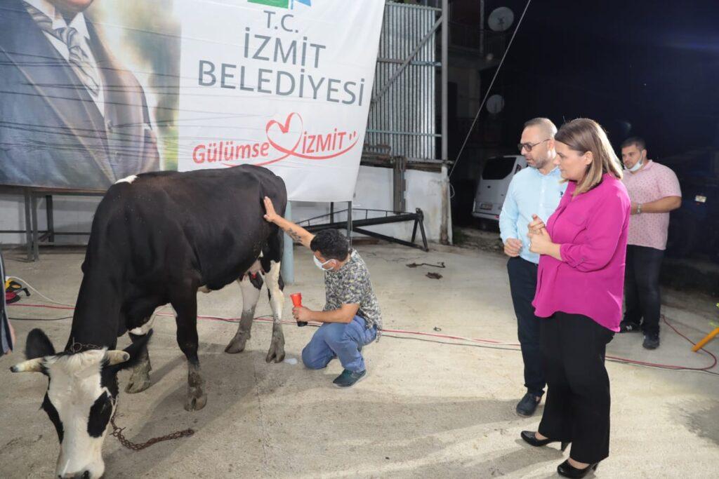 süt üreticileri